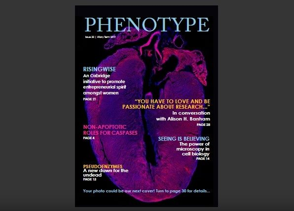 Personal reflections in pursuing a career in medicine as an ambitious woman amidst societal, published in Phenotype, a journal of the Oxford University Biochemistry Society.